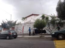muralfloresta6